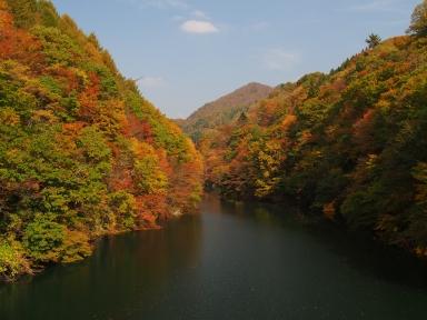 藤原湖 紅葉