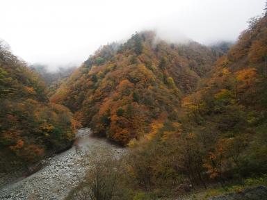 ユーシン渓谷 紅葉