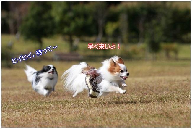 2IMG_3289.jpg