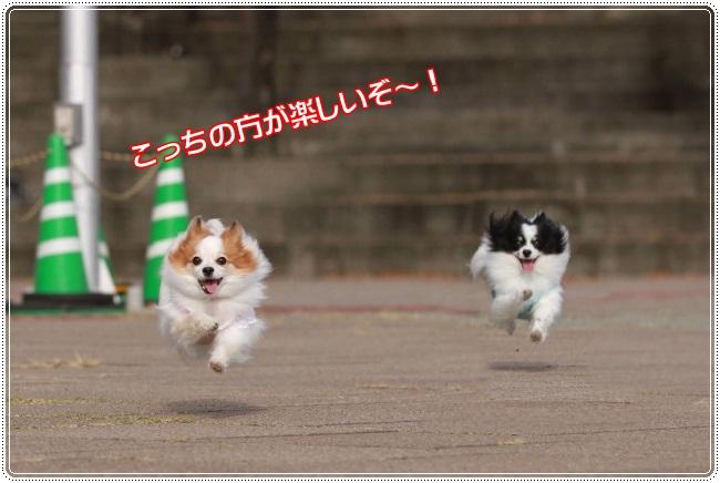 2IMG_4148.jpg