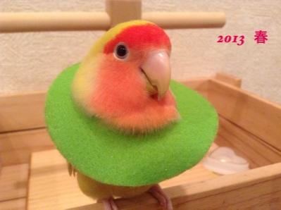 fc2blog_201503211418419c9[1]