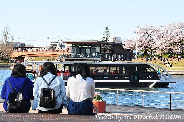 花見休日 (7)
