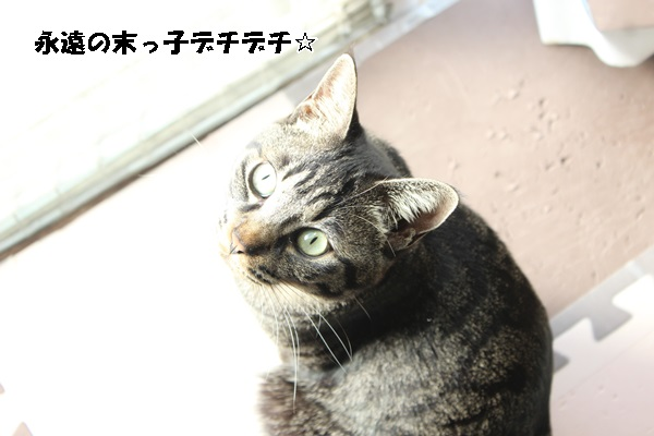 IMG_9962.jpg