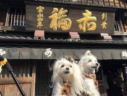 母娘&孫ワン旅 1 (5)