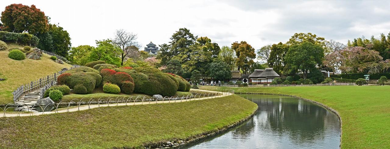 s-20160411 後楽園今日のキリシマツツジが咲き始めた園内ワイド風景 (1)