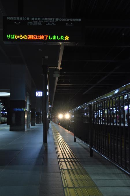 DSC_6533.jpg