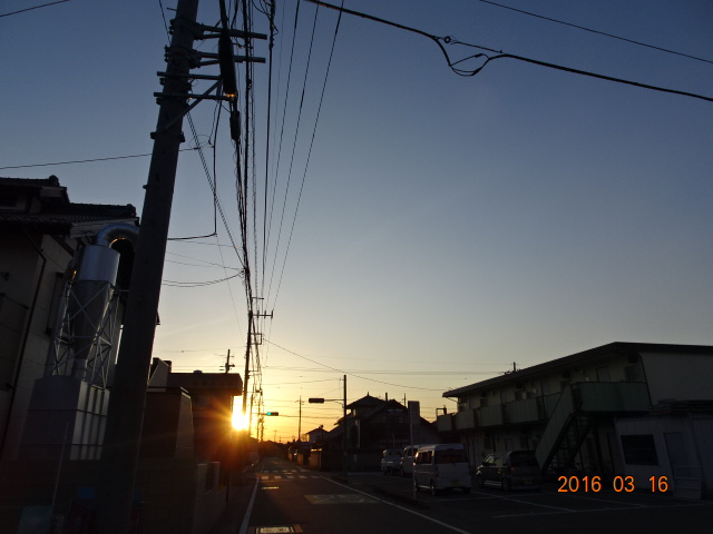 2016_03160004.jpg