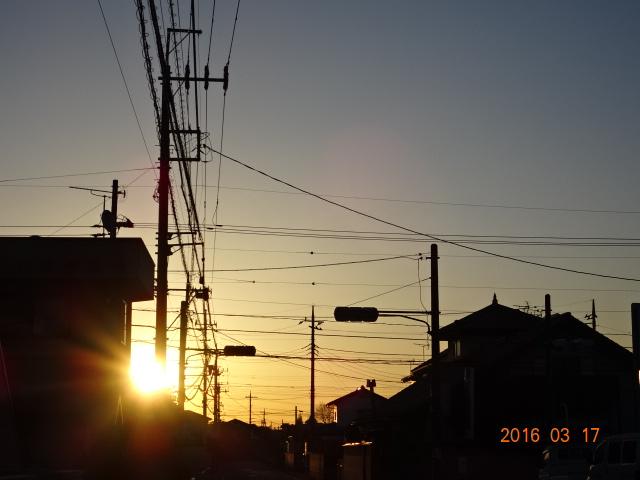2016_03170005.jpg