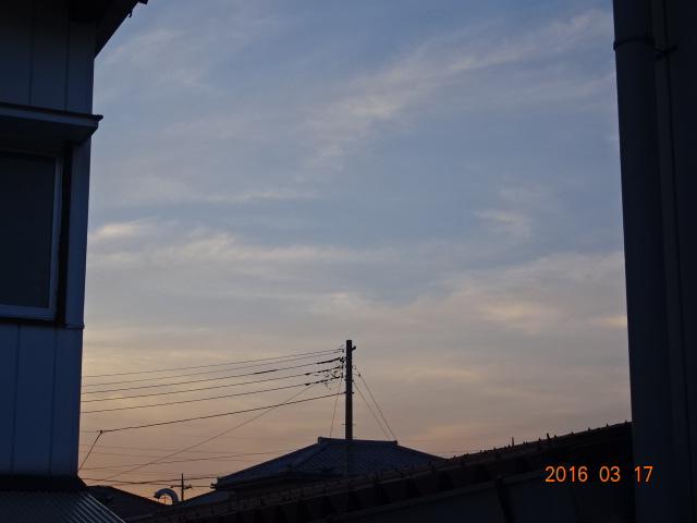 2016_03170032.jpg