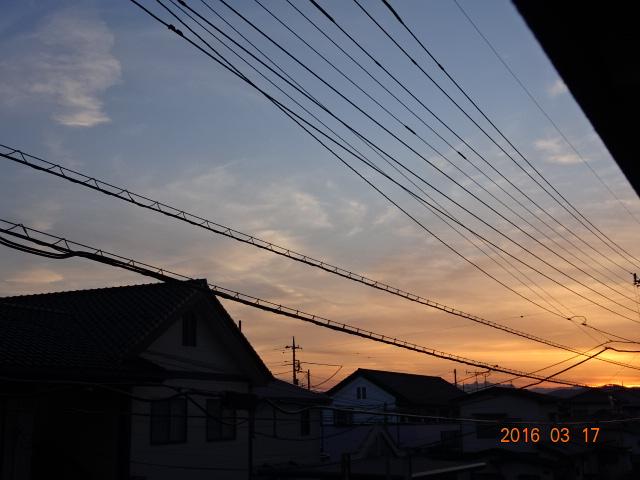 2016_03170043.jpg