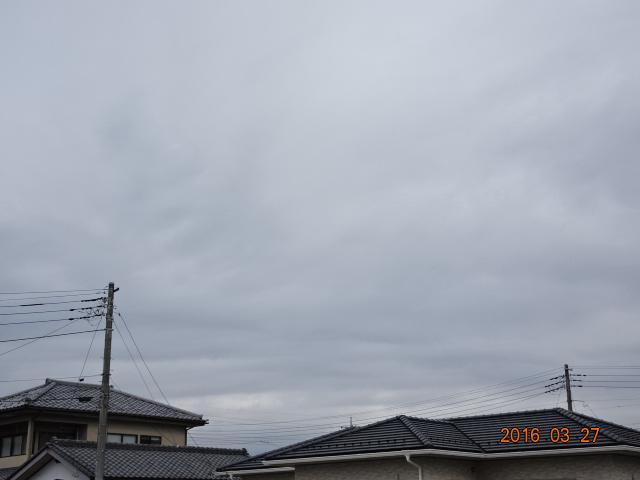 2016_03270009.jpg