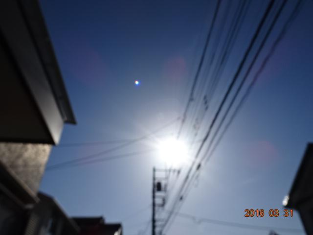 2016_03310010.jpg