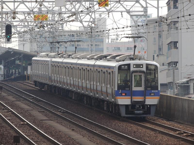DSCN4378.jpg