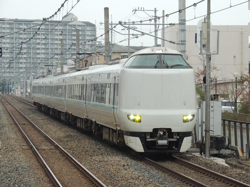 DSCN4381.jpg