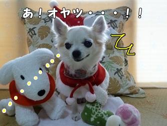 ブログ用014-2015 12 21-125007