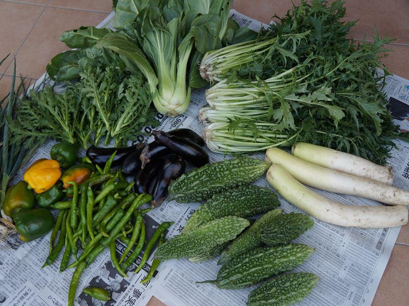 おっちゃんの野菜