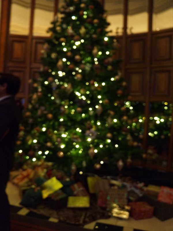 ホテル玄関のツリー