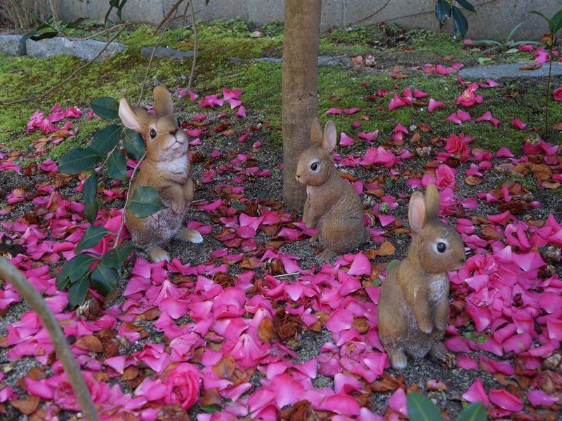 椿の花と置き物