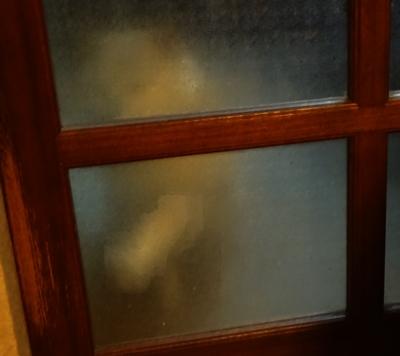 DSC04874隣の部屋で待つカノン2