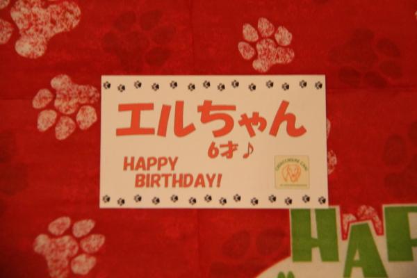 IMG_5927エル6歳の誕生日