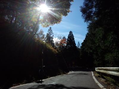 日光-板荷