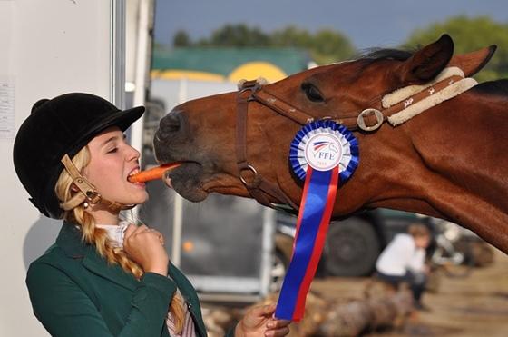 馬とニンジン