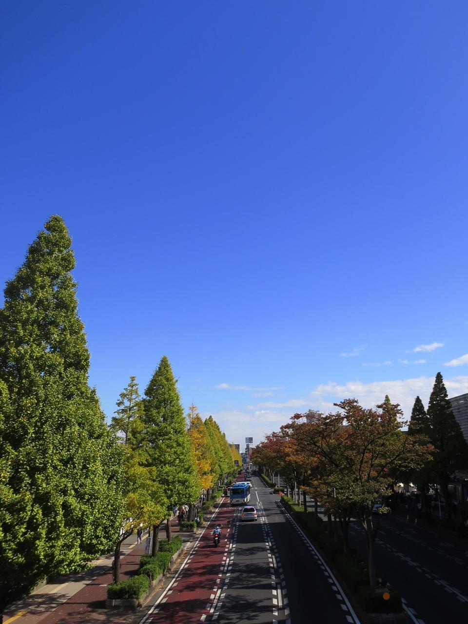 151103川崎祭り-06