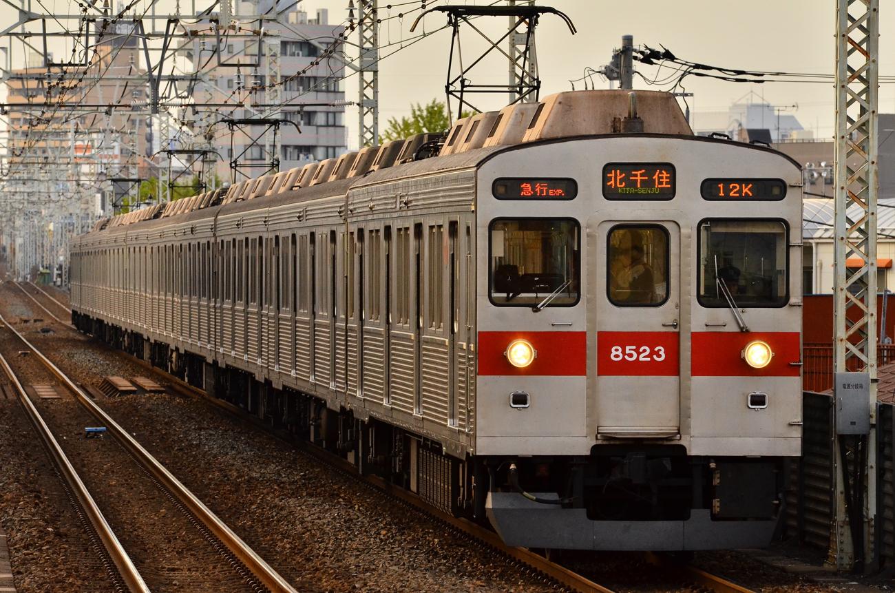 DSC_7560.jpg