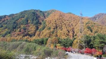 駒ケ根高原