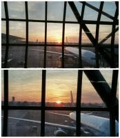 「 バンコクの朝陽 」