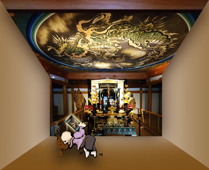 龍泉寺_天井絵図