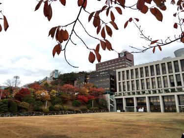 成均館大学。