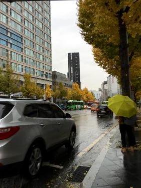 終日雨の天気。