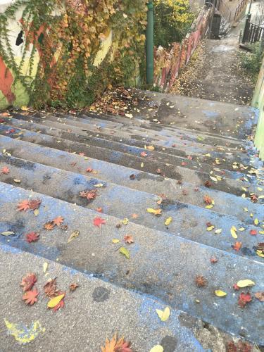 坂の街らしくすばらしい階段が…ㅎ
