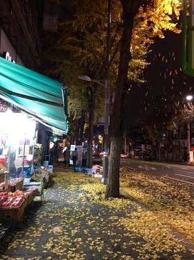 銀杏の葉散る家路。