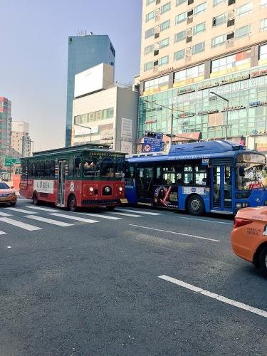 1度は乗ってみたい?観光バス