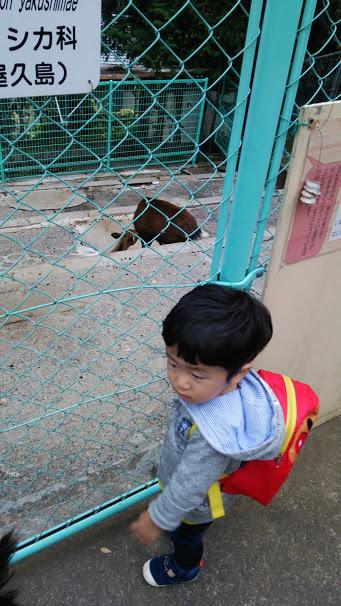 動物園優斗