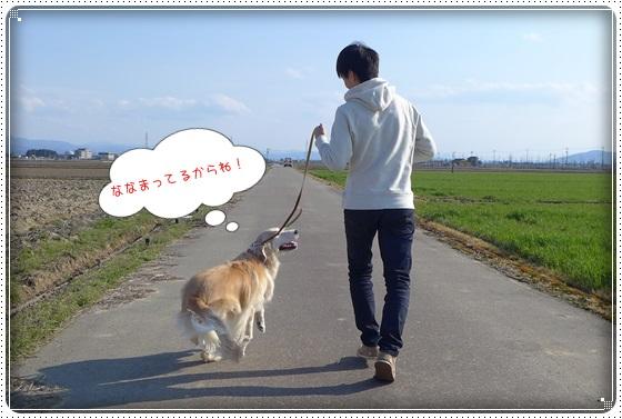 2016.3.26お散歩6