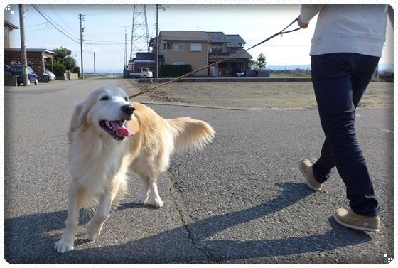2016.3.26お散歩3