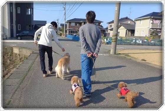 2016.3.26お散歩1