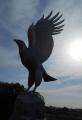 シルエットで見る鷲