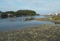 対岸は野島