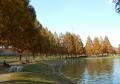 川越水上公園①