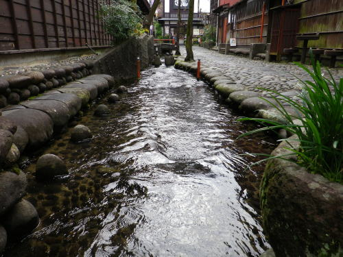 やなか水のこみち 2015 11 22-3