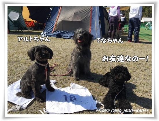20160326_1c.jpg