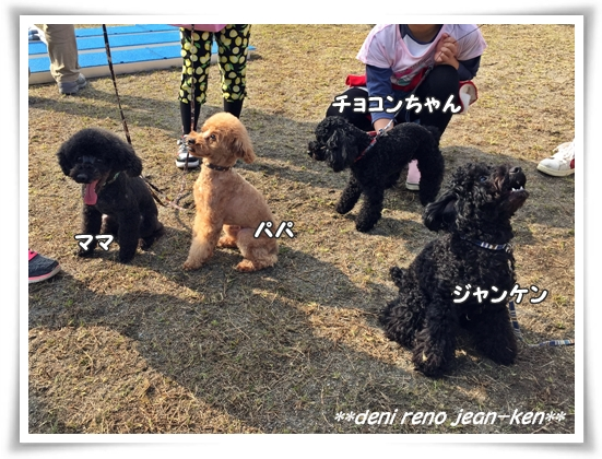 family_1c.jpg