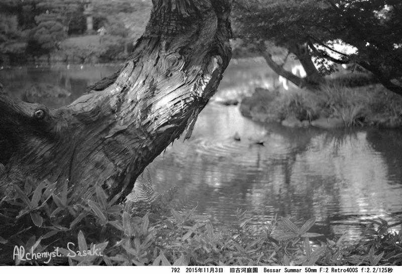 旧古河庭園792-44