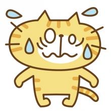 20160318 ビビる猫