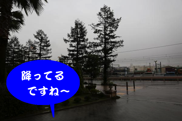 IMG_0001_convert_20151118182421.jpg