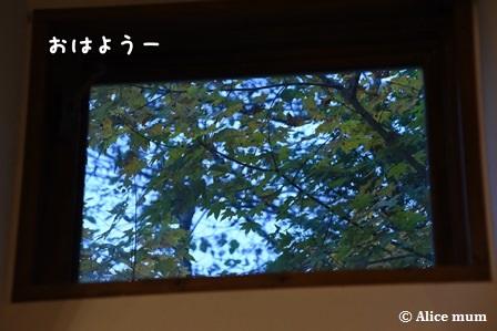 17m - コピー